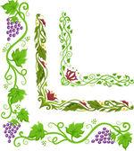 Corner Border Illustration of Grapevines — Stock Photo