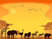 Safari Animals Background — Stock Photo