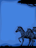 Zebra Silhouette Background — Stock Photo