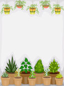 Greenhouse Background — Stock Photo