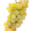Bunch of white grapes - Stock Photo