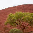 Kata Tjuta - Ayers Rock — Stock Photo