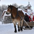 Stock Photo: Santclaus go to sleigh ride with brown horse