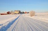 Zimowa droga — Zdjęcie stockowe