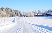 Wintry road — Stock Photo