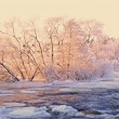 River in winter — Stock Photo #19852035
