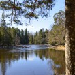 Swedish river - Stock Photo