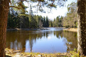 Swedish river — Stock Photo