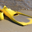Stock Photo: Flippers on beach