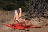 The beautiful bikini model — Stock Photo