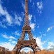 Eiffel tower in Paris — Stock Photo #13507438