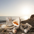 Shells on the beach — Stock Photo #14097736