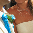 Bride and groom on their wedding day — Stock Photo #14098062