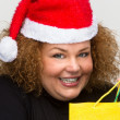 Beautiful young woman wearing a Santa hat and holding shopping b - Stok fotoraf