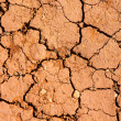 Earth dried up in drought — Stock Photo