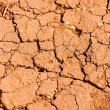 Earth dried up in drought — 图库照片