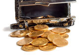 Female purse with gold coins — Stockfoto
