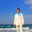 Groom by the sea - Stok fotoraf
