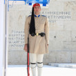 Changing guards near parliament in athens Greece - Foto Stock