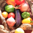 A basket of vegetables - Foto de Stock