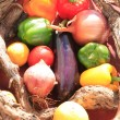 Stock Photo: A basket of vegetables