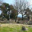 Ancient Olympia - Stock Photo