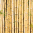 Beautiful Thai bamboo — Stock Photo #19316429