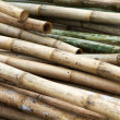 Stack of bamboos - Stock Photo