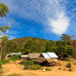 Thai jungle in Phuket - Stock Photo