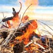Bonfire burning  at the beach - Stock Photo