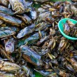 Insects as snack food in Thailand - 图库照片