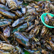 Insects as snack food in Thailand — Stock Photo #21989783