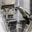 Gargoyle on Notre Dame Cathedral — Stock Photo #23898613
