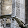 Gargoyle on Notre Dame Cathedral — Stock Photo #23898643