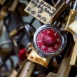 Love locks in Paris - 图库照片