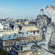 Gargoyle of the roof of Cathedral Notre Dame - Stok fotoğraf