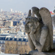 Gargoyle of roof of Cathedral Notre Dame — Stock Photo #23945933