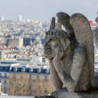Gargoyle of the roof of Cathedral Notre Dame - Stock Photo