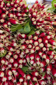 Red radishes at a market — Stock Photo