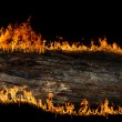 Burning wooden board - Stockfoto