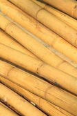 Pile of bamboo — Stock Photo
