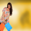 Young woman holding shopping bags — Stock Photo #25131039