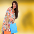 Young woman holding shopping bags - Foto de Stock