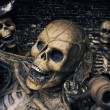 Stock Photo: Three Skeleton Pirates Portrait