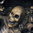 Three Skeleton Pirates Portrait - Stockfoto