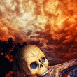 Pirate skeleton in caribbeans — Stock Photo #26198483