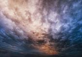 Aeroplano sobre cielo dramático — Foto de Stock