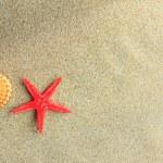 Starfish and seashells  — Stock Photo #26781445