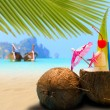 Stock Photo: Coconut on the beach in Phi Phi island