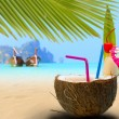 Coconut on the beach in Phi Phi island — Stock Photo